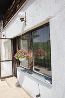 Ablakkorszerűsítés, Szentendre
